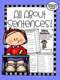Different Types of Sentences - No Prep!