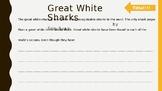 Differentiate lesson - Great White shark