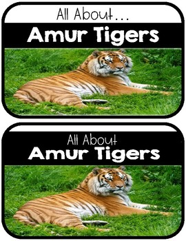 Differentiated Amur Tigers Research Books