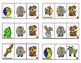 Differentiated Benchmark Advance Themed Short Ee C-V-C Blending Cards