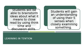 Differentiated Close Reading PowerPoint Lesson with two sets of tasks
