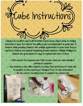 """Differentiated Comprehension Lesson: Cubing with """"Picnic at Mudsock Meadow"""""""