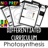 Differentiated Curriculum Worksheets- Photosynthesis