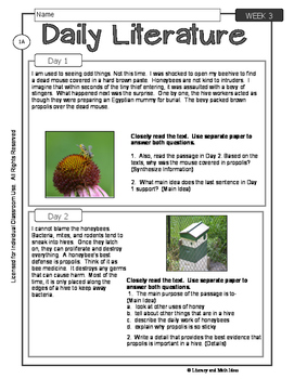 Differentiated Daily Literature Practice Grade 6 (Week 3)