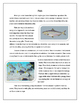 Differentiated Fish Reading Comprehension