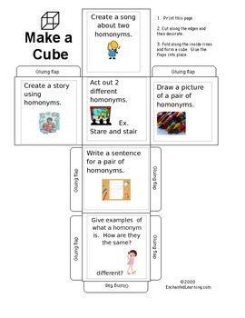 Differentiated Homonym Lesson Plan and Student Activity Cube