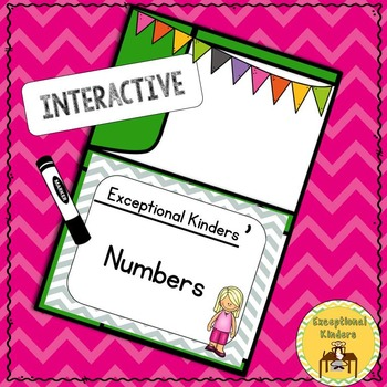 Differentiated Interactive Numbers Autism