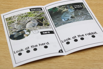 Differentiated Leveled Nonfiction Readers (Levels A-D) Set 1 Animal Topics