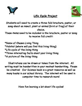 Differentiated Life Cycle Project
