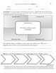 Differentiated Literature Circle Role Sheets: Summarizer C