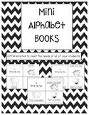 Differentiated Mini Alphabet Books