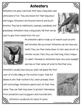 Differentiated Nonfiction Unit: Anteaters