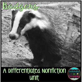 Differentiated Nonfiction Unit: Badgers