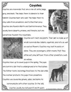 Differentiated Nonfiction Unit: Coyotes