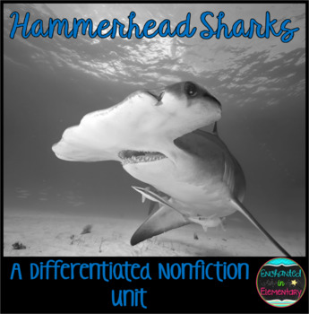 Differentiated Nonfiction Unit: Hammerhead Sharks