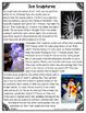 Differentiated Nonfiction Unit: Ice Sculptures