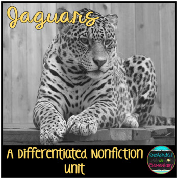 Differentiated Nonfiction Unit: Jaguars