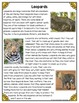 Differentiated Nonfiction Unit: Leopards