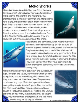 Differentiated Nonfiction Unit: Mako Sharks