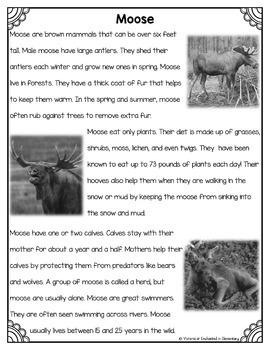 Differentiated Nonfiction Unit: Moose