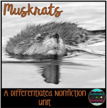 Differentiated Nonfiction Unit: Muskrats
