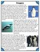 Differentiated Nonfiction Unit: Penguins