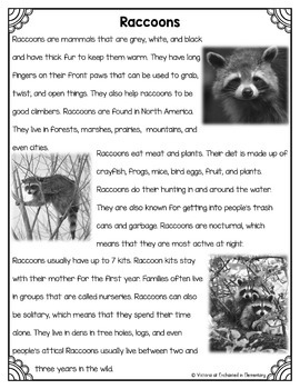 Differentiated Nonfiction Unit: Raccoons