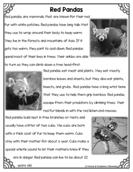 Differentiated Nonfiction Unit: Red Pandas