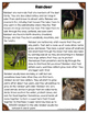 Differentiated Nonfiction Unit: Reindeer