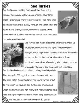 Differentiated Nonfiction Unit: Sea Turtles