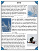 Differentiated Nonfiction Unit: Snow