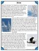 Differentiated Nonfiction Unit: Snow