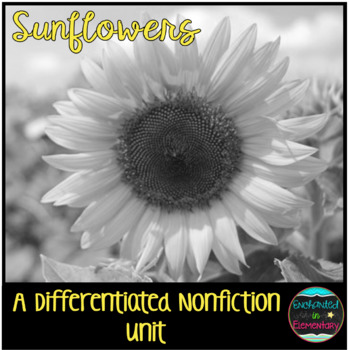 Differentiated Nonfiction Unit: Sunflowers