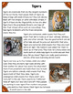 Differentiated Nonfiction Unit: Tigers