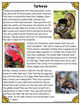 Differentiated Nonfiction Unit: Turkeys