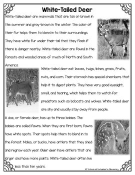 Differentiated Nonfiction Unit: White-Tailed Deer