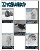 Differentiated Nonfiction Units: Arctic Animals Bundle