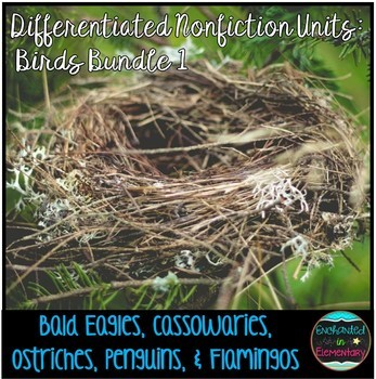 Differentiated Nonfiction Units: Birds Bundle 1