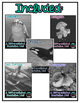 Differentiated Nonfiction Units: Ocean Animals Bundle 1