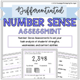 Differentiated Number Sense Assessment: Pre-Test and Scori