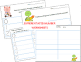 Differentiated Number Work