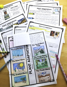 Differentiated Plant Adaptations Reading Passages, Vocabulary & Comprehension