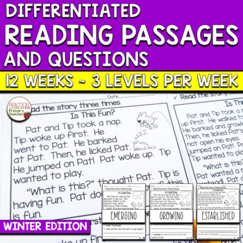 Differentiated Reading Passages and Comprehension Activities - Winter Edition