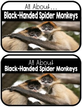 Differentiated Spider Monkey Research Books