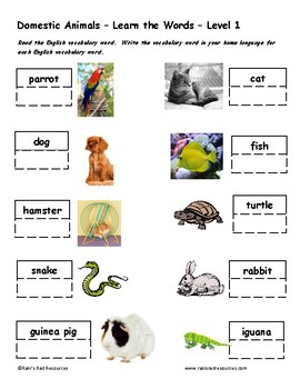 Differentiated Vocabulary Packet for  ESL Students - Domestic Animals
