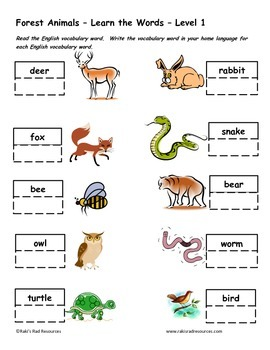 Differentiated Vocabulary Packet for  ESL Students -Forest Animals