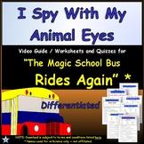 Differentiated Worksheet, Quiz Ans - Magic School Bus - I Spy Animal Eyes *
