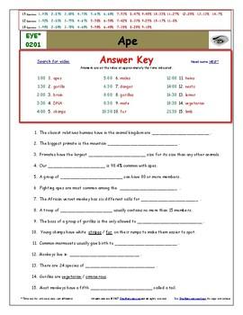 Differentiated Worksheet, Quiz, Ans for Eyewitness * - Ape