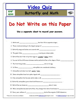 Differentiated Worksheet, Quiz, Ans for Eyewitness * - Butterfly Moth