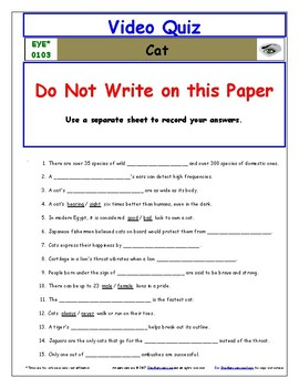 Differentiated Worksheet, Quiz, Ans for Eyewitness * - Cat